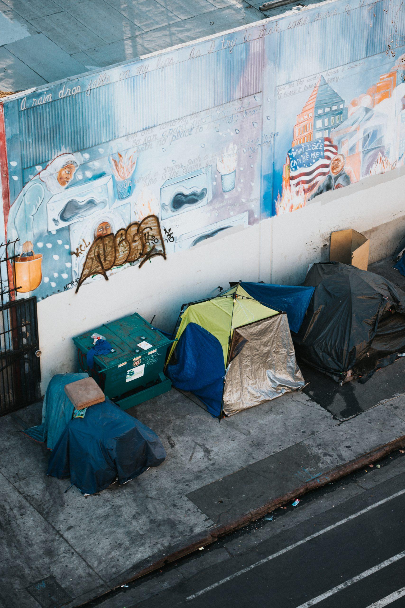 Shelter Landing Page